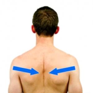 shoulder blade squeezes